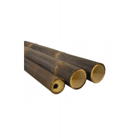 Bambuslatid